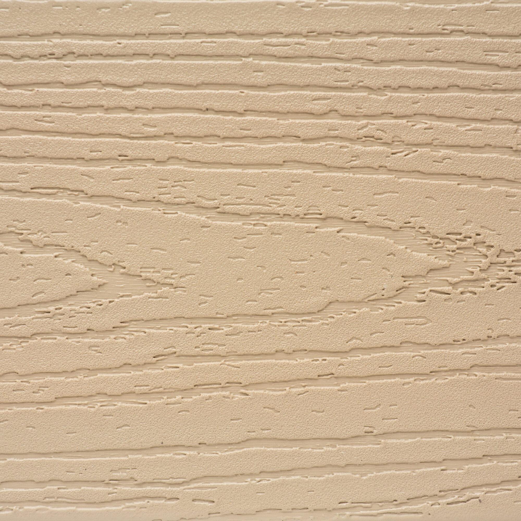 Elite-Sandy-Beach-Texture